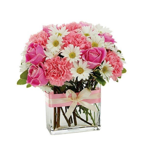 Gerbera Daisy Arrangements Vases: Online Gift And Flowers